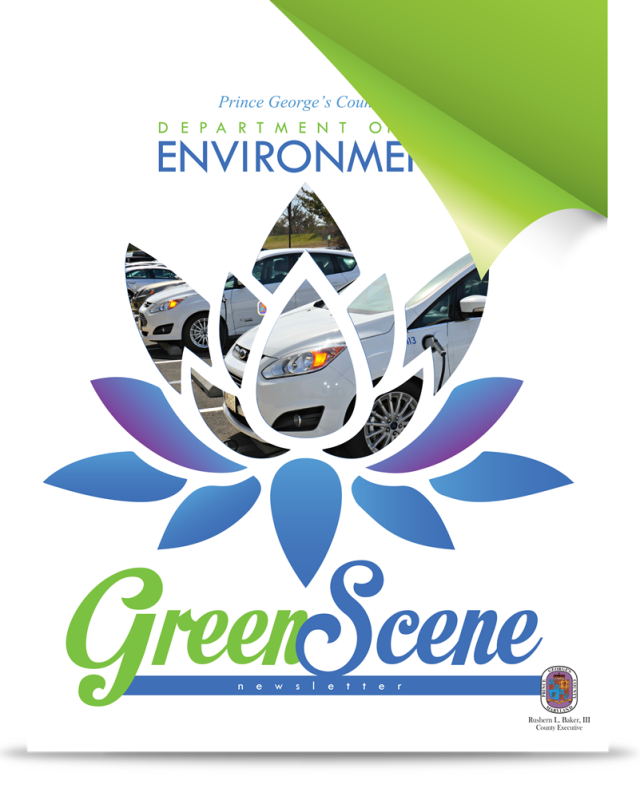 DoE's Green Scene Newsletter cover
